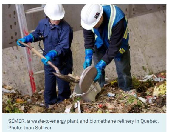 The Clean Fuel Standard – will it create jobs in Canada - Deidra Garyk 1